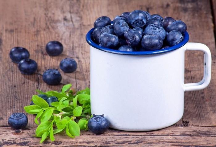 borůvky jsou skvělými antioxidanty