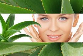 Colostrum a Aloe Vera: dva (nejen) kosmetické zázraky