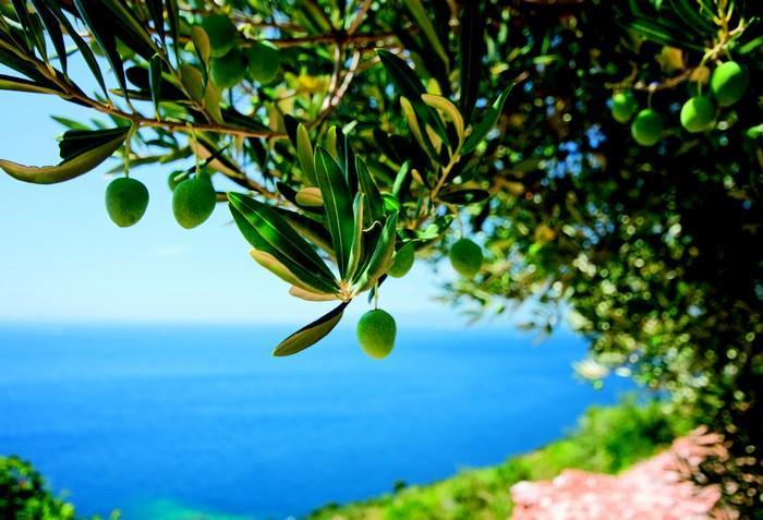 Kousek Řecka u vás doma