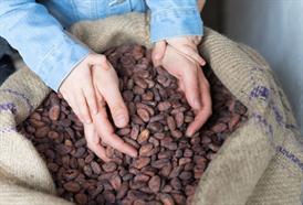 HORKÉ BOBY - kakaové boby v nejčistší podobě