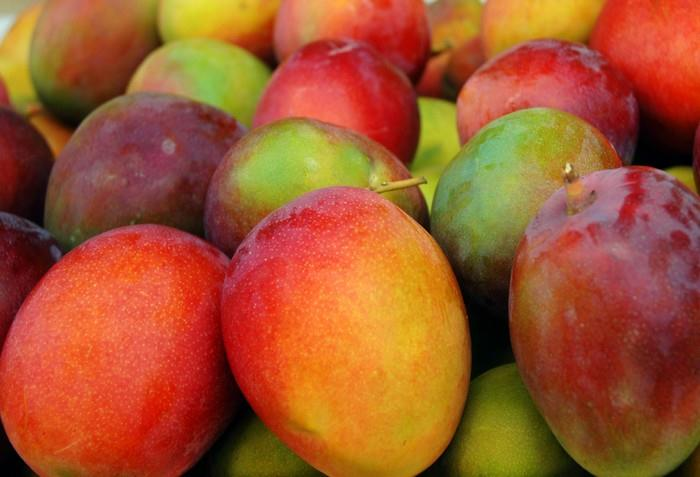 Mango pusobí proti infekcím