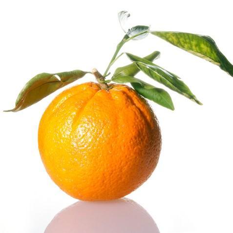 Bohatství pod oranžovou slupkou