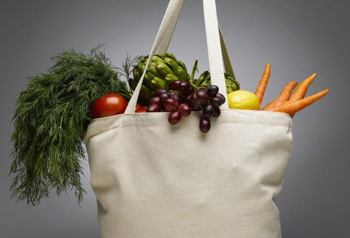 Skladba potravy ovlivňuje úspěšnost početí