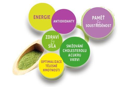 Proč pít 2 x denně zelený čaj Matcha