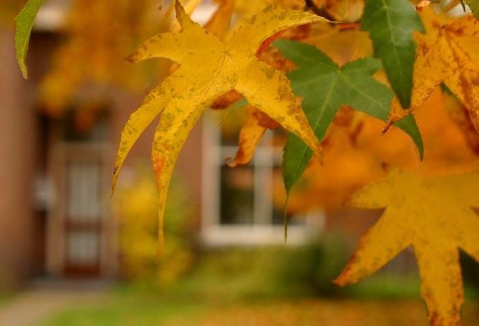 Jak se zbavit podzimních depresí a neustálé únavy?